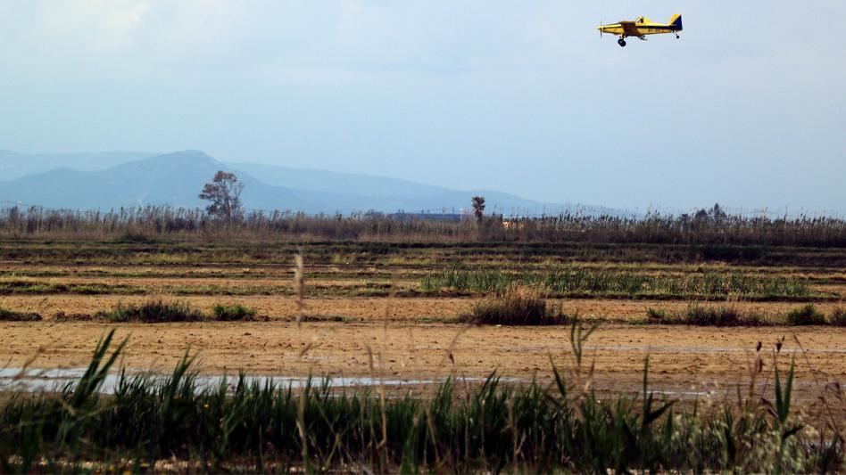 Comença la campanya de control dels mosquits al delta de l'Ebre amb el tractament de 400 hectàrees d'espais naturals